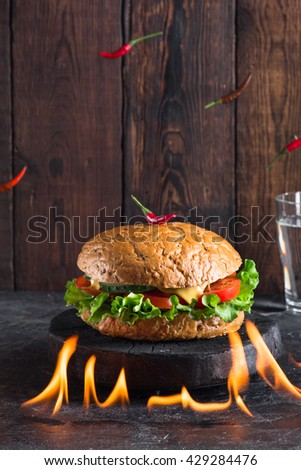 Chile pepper burger on a fire with wooden background