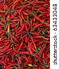 chilli red  peppers - stock photo
