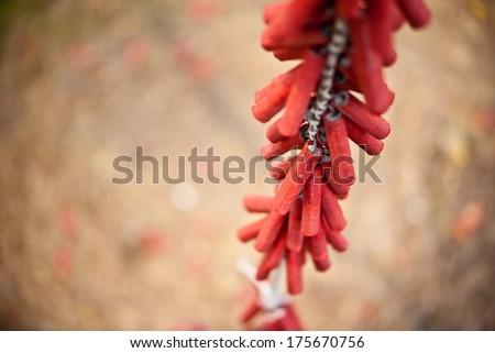 Chinese Firecrackers - stock photo