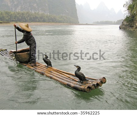 chinese fisherman with his cormorants - stock photo