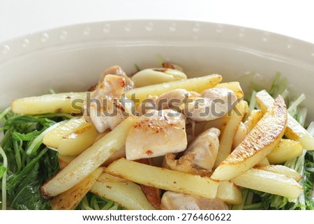 Chinese food, potato and chicken stir fried - stock photo