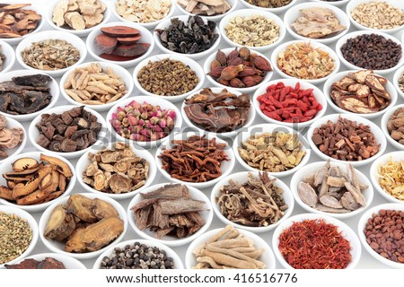 Chinese herb selection used in traditional alternative herbal medicine in porcelain bowls over white background. - stock photo