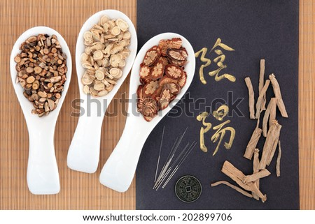 Chinese herbal medicine with acupuncture needles with yin and yang calligraphy script and I ching coin. Translation reads as yin yang. - stock photo
