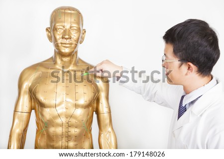 chinese medicine doctor teaches acupoint on human model - stock photo