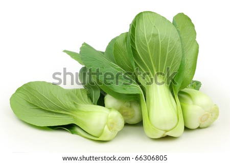 Chinese Vegetable cabbage on white background - stock photo