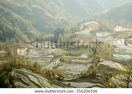 Chinese Yunnan Yuanyang rice terraces - stock photo