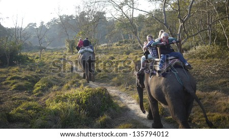 CHITWAN, NEPAL- JANUARY 22:  the elephant tour in Chitwan on January 22 2010. The elephants are breed and trained in breeding Centre, keeping the good relationship between elephants and local. - stock photo