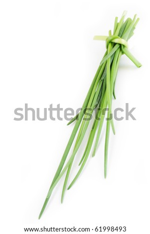 chive on white background - stock photo