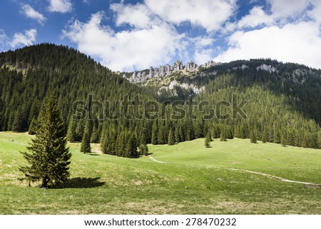 Chocholowska valley, Tatra Mountains, Poland - stock photo