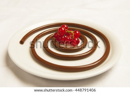chocolate and red berries dessert