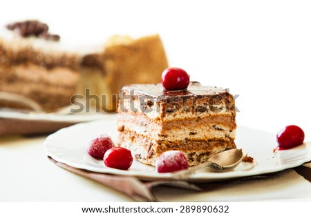 Chocolate cake on white plate with frozen wine cherry. - stock photo