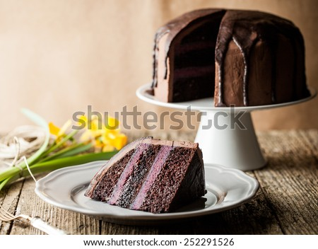 chocolate cake with blueberry cream and dark cocoa icing - stock photo