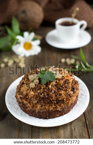 Chocolate cake with coconut and cream - stock photo