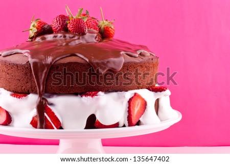 chocolate cake with cream and strawberry - stock photo