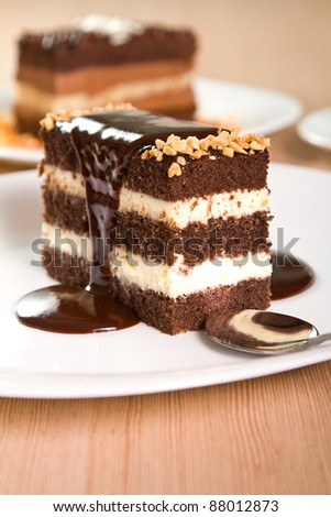 Chocolate cakes with crushed nuts and liquid chocolate - stock photo
