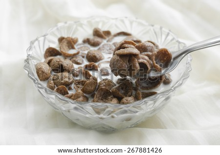 chocolate cereal in bowl with milk  - stock photo