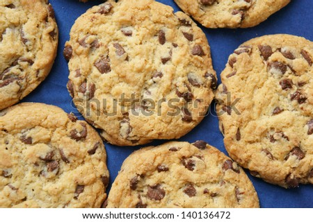 Chocolate chip cookies on blue background