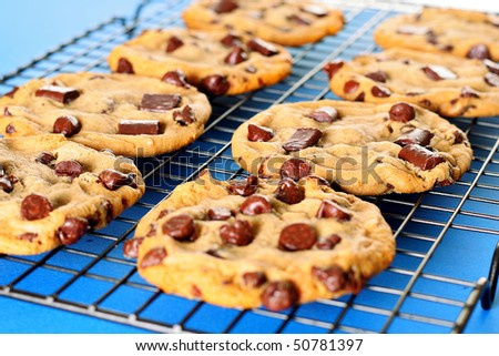 chocolate chip cookies on rack blue background