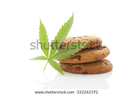 Chocolate chip cookies with marijuana leaf isolated on white background. Space cookies. - stock photo