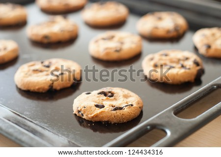 Chocolate cookies on the baking - stock photo