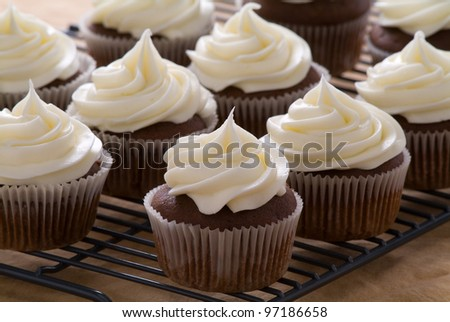Chocolate cupcakes with cream cheese frosting - stock photo