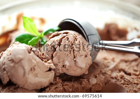 Chocolate ice cream in a bowl with leaf - stock photo