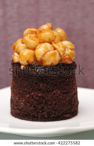 chocolate macadamia nut cake - stock photo