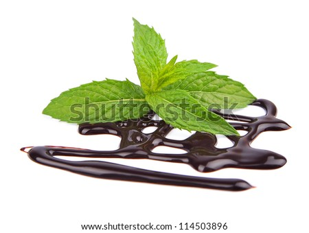Chocolate syrup with fresh mint on white - stock photo