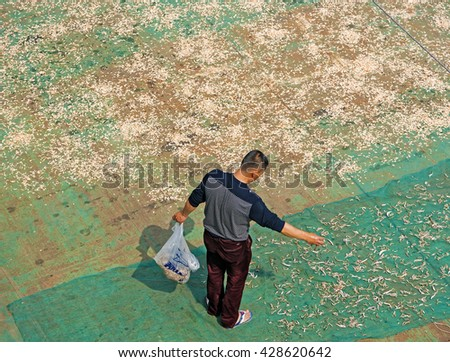 CHONGQING, CHINA â?? April 13, 2016: Fisherman drying shrimps and fish under the sun - stock photo