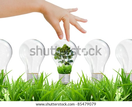 Choose green energy and environent, lamp, grass - stock photo