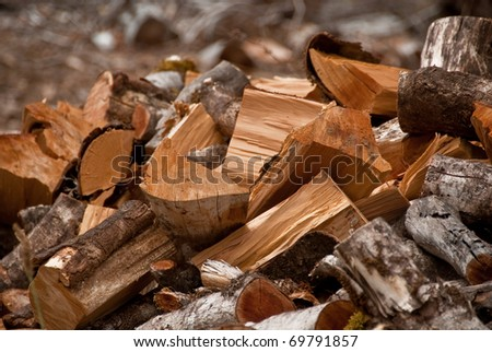 Chopped fire wood ready to be stacked for winter - stock photo