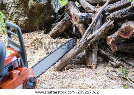 Chopped Firewood/ a chainsaw and the pile of firewood just created with it