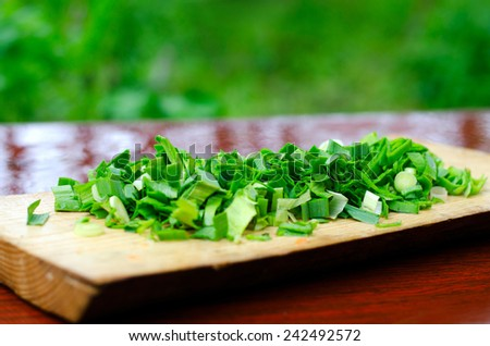 Chopped green onions on a cutting Board on the rain-drenched table on the background of grass - stock photo