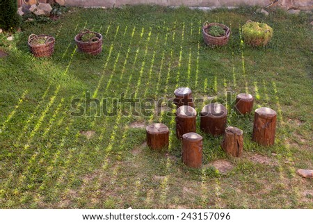 Chopped wood serving as chairs on the lane in the sun rays - stock photo