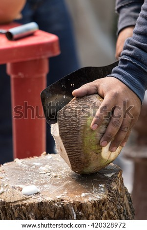 chopping a coconut for drink in mexico