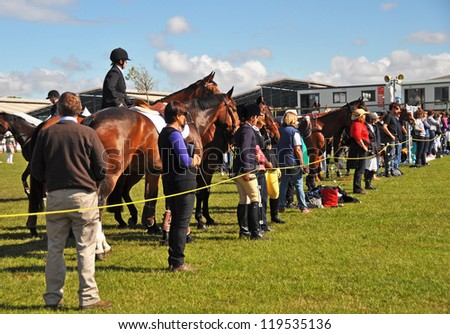CHRISTCHURCH, NEW ZEALAND - NOVEMBER 16: Equestrian horses, riders and supporters eagerly watch the show jumping action at The 2012 Canterbury A&P Show on November 16, 2012 in Christchurch. - stock photo