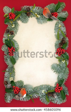 Christmas abstract background border with robin decorations, holly, mistletoe and snow covered blue spruce fir on old parchment paper over red. - stock photo