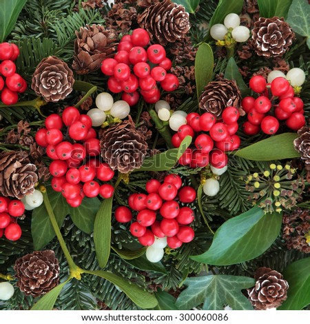Christmas and winter background with flora of holly, ivy, mistletoe, blue spruce fir and cedar cypress greenery. - stock photo