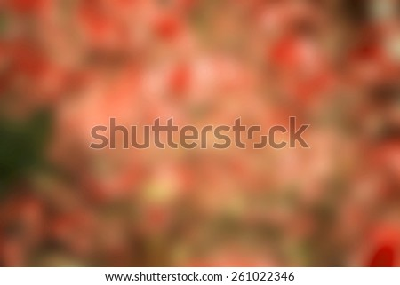 Christmas Background Blur - stock photo