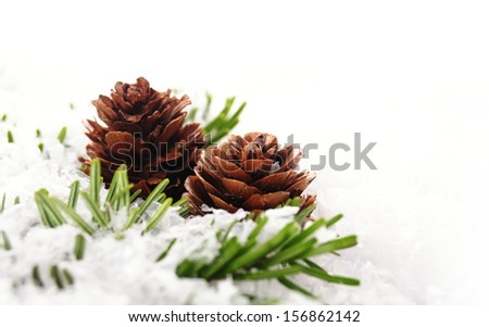 christmas background of branch with cone - stock photo