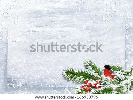 Christmas background with bullfinches on snow branch - stock photo