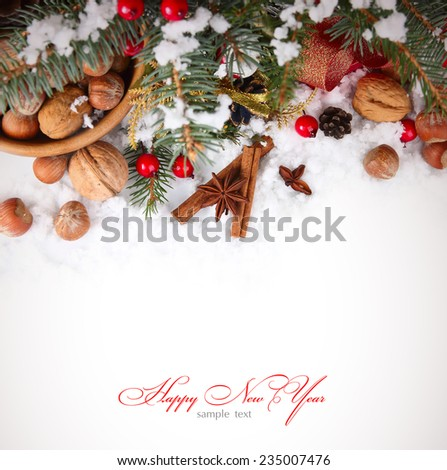 Christmas background with nuts and spices in the snow - stock photo