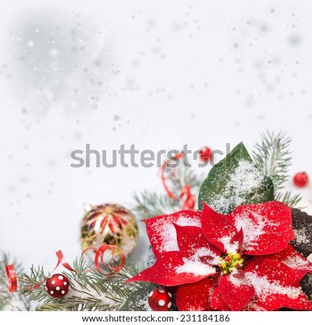Christmas background with poinsettia, Christmas tree and baubles on snow - stock photo