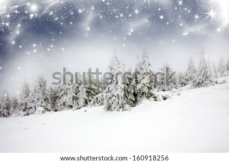 Christmas background with snowfall and snowy fir trees  - stock photo