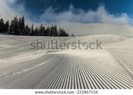 Christmas background with snowy fir trees. Ukraine - stock photo