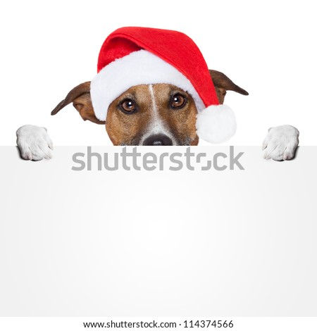 christmas banner placeholder dog - stock photo