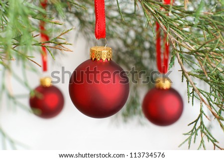 Christmas baubles hanging on a Cedar tree branch - stock photo