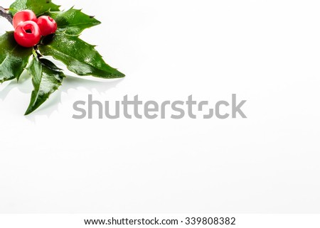 Christmas card with holly berry isolated on white background. - stock photo