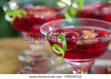Christmas cranberry cocktail - stock photo