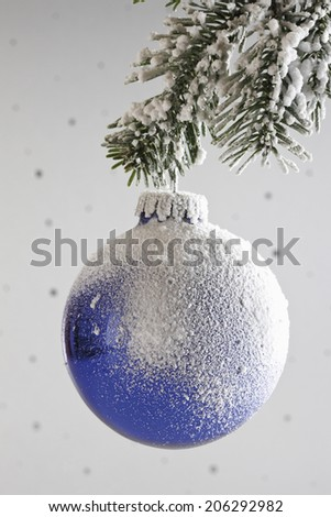 Christmas decoration, Christmas bauble hanging from pine twig - stock photo